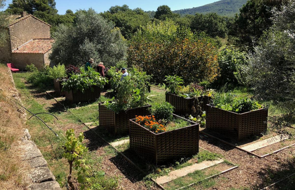 carrés potagers - jardin potager de Bonnieux par Corinne Détroyat