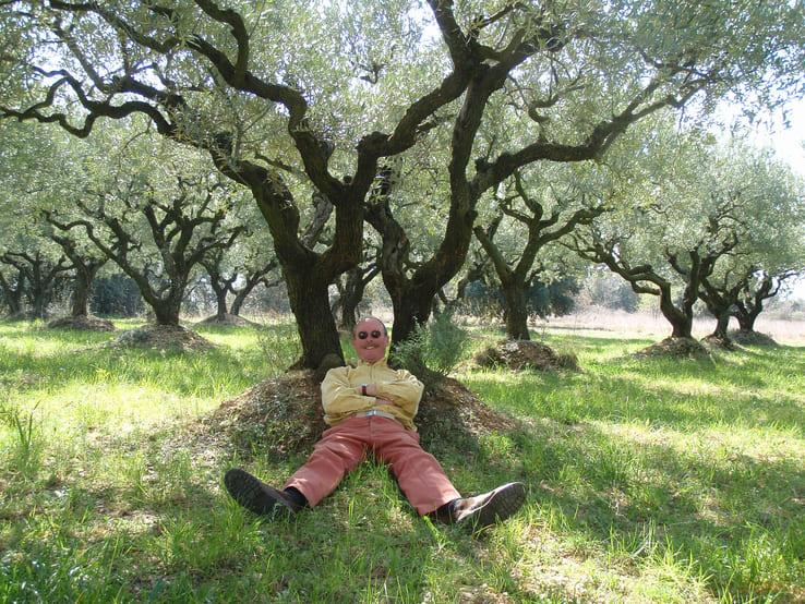 Etienne se repose au pied d'un olivier