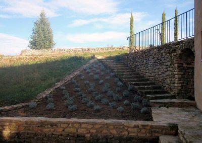 domaine de la Barre - escalier aux lavandes