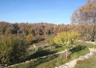 Jardin de la Barre - petit verger