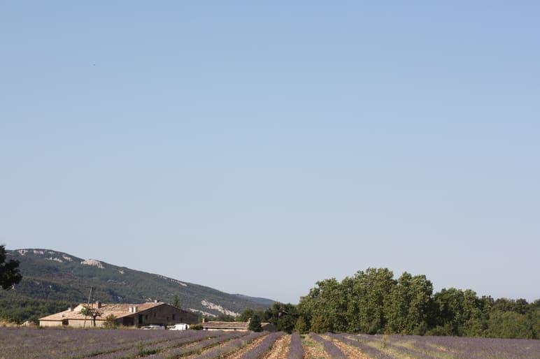 vue globale de la propriété La Barre