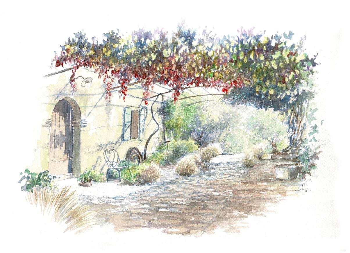 Croquis de jardin à l'aquarelle - Claude Pasquer