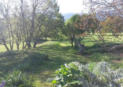 Jardin de la Molière