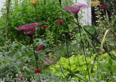 Jardin de la glkaerie Droog - amsterdam - Corinne Detroyat @ La moliere